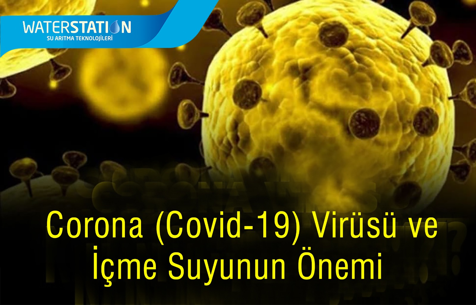 WhatsApp Image 2020-03-17 at 09.49.40.jpeg